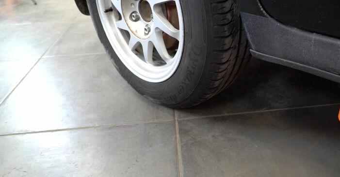 Recomandările pas cu pas pentru înlocuirea de sine stătătoare Ford Focus mk2 Sedan 2008 1.6 Ti Arc spirala