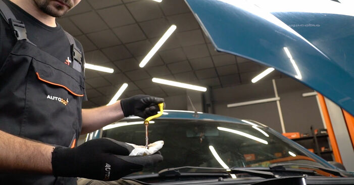 À quel point est-il difficile de le faire soi-même : télécharger le guide illustré pour le changement de Filtre à Huile sur Renault Kangoo kc01 1.9 dTi 2003