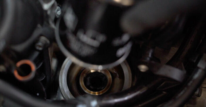 Schimbare Filtru ulei la Golf 6 2006 1.6 TDI de unul singur