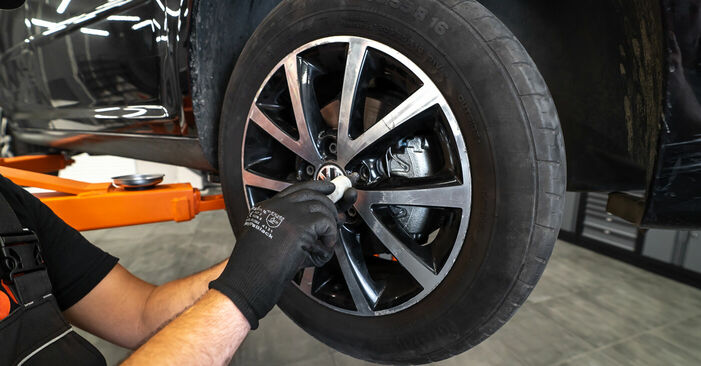 Step-by-step recommendations for DIY replacement Touran 1t3 2011 1.2 TSI Brake Calipers