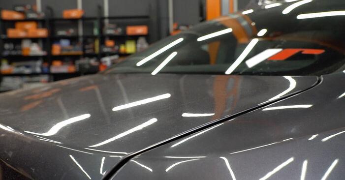BMW 3 SERIES 335i 3.0 Heckklappendämpfer ausbauen: Anweisungen und Video-Tutorials online
