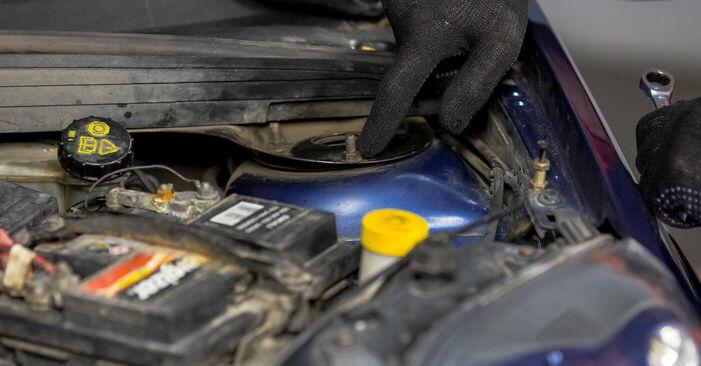 Schritt-für-Schritt-Anleitung zum selbstständigen Wechsel von Ford Fiesta V jh jd 2004 ST150 2.0 Domlager