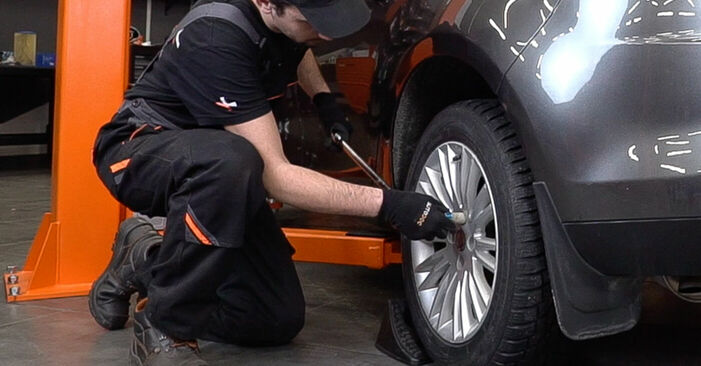 How to replace FIAT BRAVO II (198) 1.9 D Multijet 2007 Springs - step-by-step manuals and video guides
