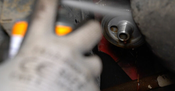 107 1.0 2006 Ölfilter - Anleitung zum selber Austauschen