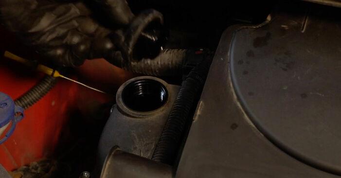 Tauschen Sie Ölfilter beim PEUGEOT 107 1.4 HDi 2008 selbst aus