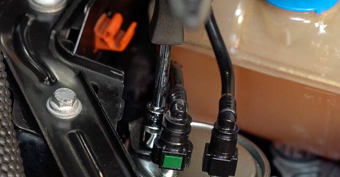 Kā nomainīt Degvielas filtrs FIAT BRAVO II (198) 2006 - bezmaksas PDF un video rokasgrāmatas