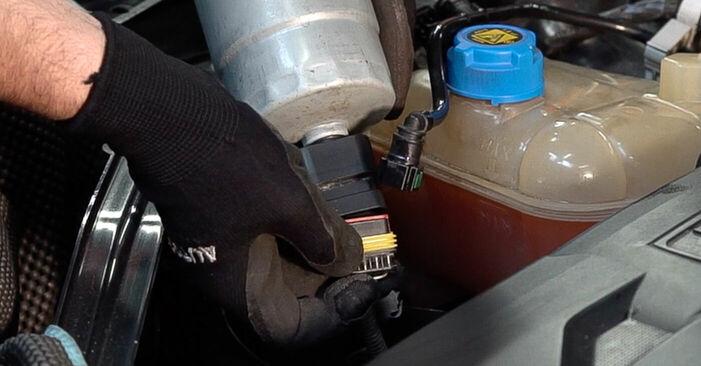FIAT BRAVA 2013 Degvielas filtrs pakāpeniska nomaiņas rokasgrāmata
