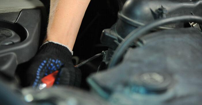 Wechseln Luftfilter am BMW X3 (E83) 3.0 i xDrive 2006 selber
