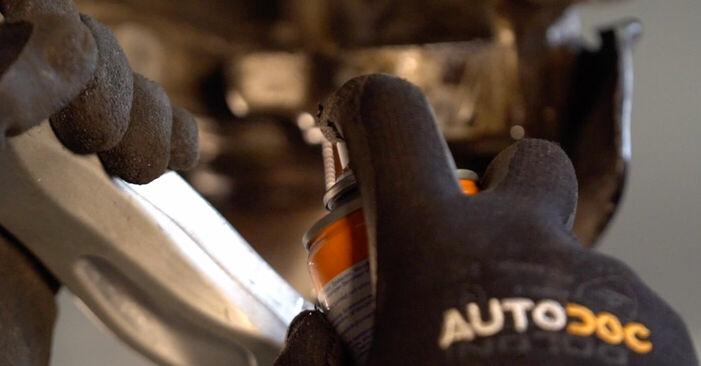 Wie Radlager BMW X3 (E83) 3.0 d 2004 austauschen - Schrittweise Handbücher und Videoanleitungen