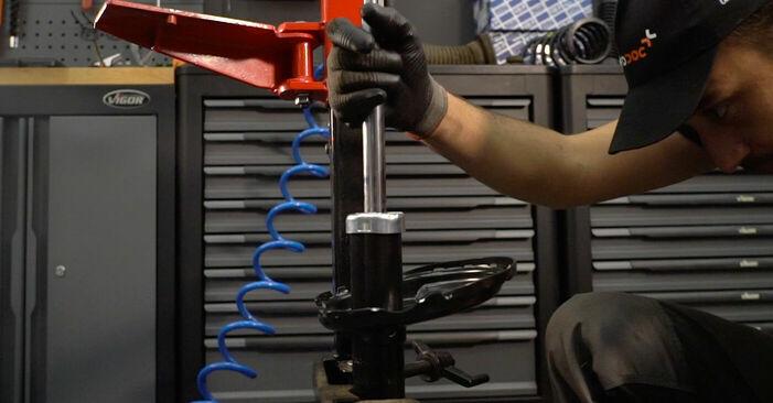 Stoßdämpfer Lexus RX XU30 3.3 400h 2005 wechseln: Kostenlose Reparaturhandbücher
