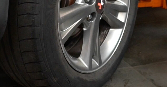 Schritt-für-Schritt-Anleitung zum selbstständigen Wechsel von Lexus RX XU30 2004 3.5 Stoßdämpfer