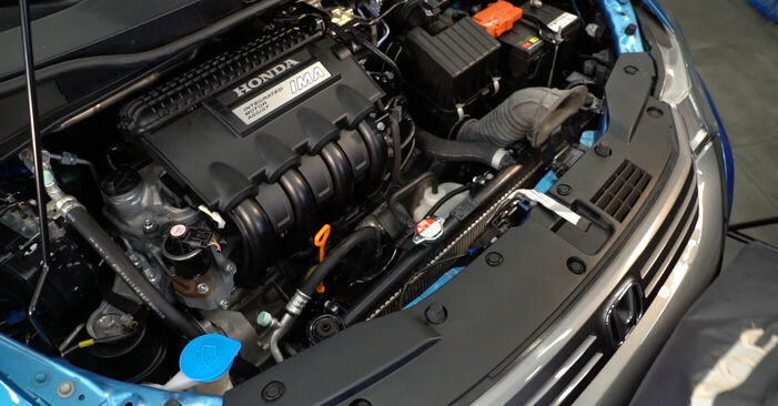 INSIGHT (ZE_) 1.3 Hybrid (ZE28, ZE2) 2020 1.3 Hybrid (ZE2) Ölfilter - Handbuch zum Wechsel und der Reparatur eigenständig