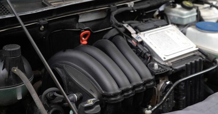 Schritt-für-Schritt-Anleitung zum selbstständigen Wechsel von Mercedes W245 2008 B 150 1.5 (245.231) Ölfilter