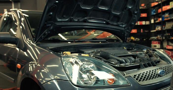 Wie Zündkerzen Ford Fiesta V jh jd 1.4 TDCi 2001 tauschen - Kostenlose PDF- und Videoanleitungen