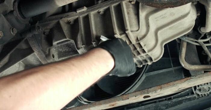 Schritt-für-Schritt-Anleitung zum selbstständigen Wechsel von Ford Fiesta V jh jd 2004 ST150 2.0 Ölfilter