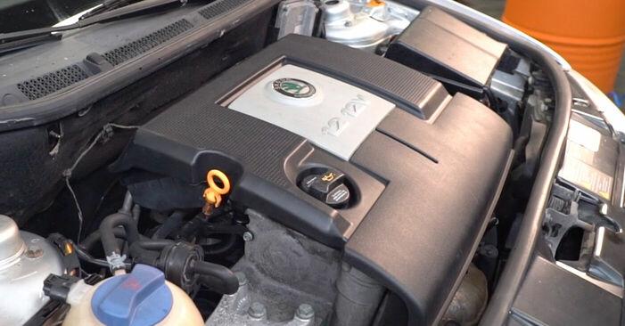 Hvor svært er det at gør-det-selv: Tændrør udskiftning på Skoda Fabia 6y5 1.4 16V 2005 - hent illustreret vejledning