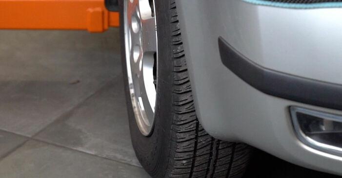 Schritt-für-Schritt-Anleitung zum selbstständigen Wechsel von Skoda Fabia 6y5 2002 1.4 TDI Bremsschläuche