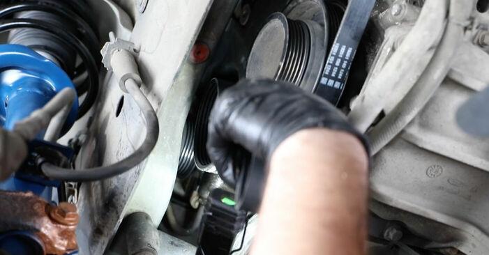 How to change Poly V-Belt on FORD Fiesta Mk5 Hatchback (JH1, JD1, JH3, JD3) 2003 - tips and tricks