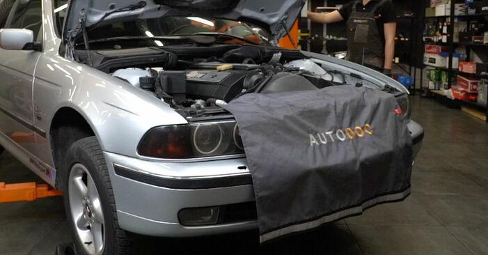 Смяна на BMW E39 530d 3.0 1997 Носач На Кола: безплатни наръчници за ремонт