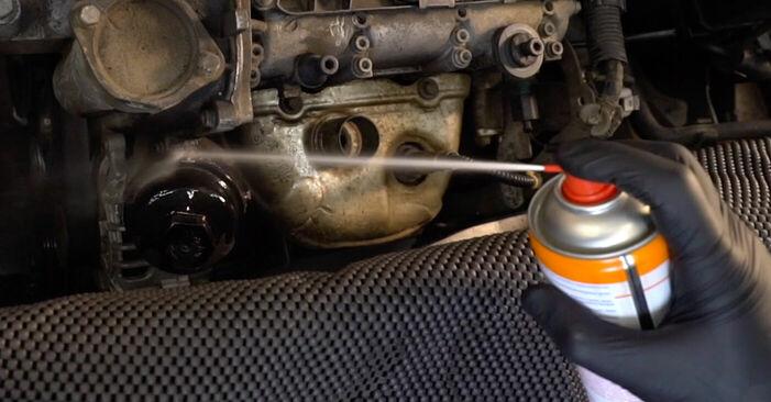 Wechseln Sie Ölfilter beim Skoda Fabia 6y5 1999 1.4 16V selber aus