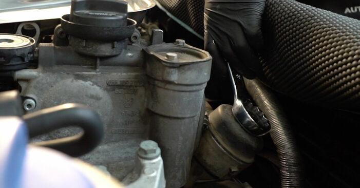Wie man Ölfilter am SKODA FABIA Combi (6Y5) 2001 ersetzt - Hinweise und Ratschläge