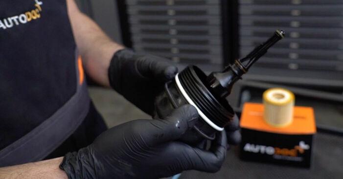 Skoda Fabia 6y5 1.9 TDI 2001 Ölfilter austauschen: Unentgeltliche Reparatur-Tutorials