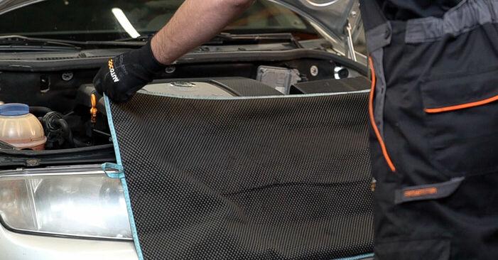 Wie man SKODA FABIA Combi (6Y5) 1.4 16V 2000 Motorlager wechselt - Schritt-für-Schritt-Leitfäden und Video-Tutorials