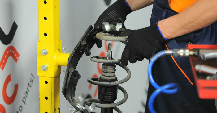 Step-by-step recommendations for DIY replacement Renault Scenic 2 2008 2.0 Springs