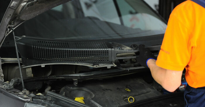 How hard is it to do yourself: Springs replacement on Renault Scenic 2 1.9 dCi 2009 - download illustrated guide