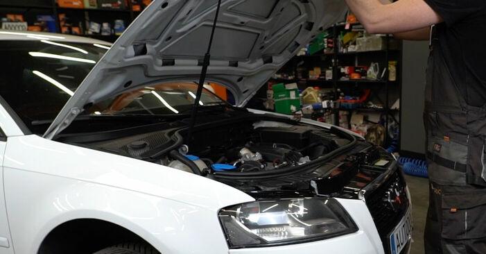 Wie man Luftfilter beim Audi A3 8p1 2003 wechselt - Gratis PDF- und Video-Tutorials