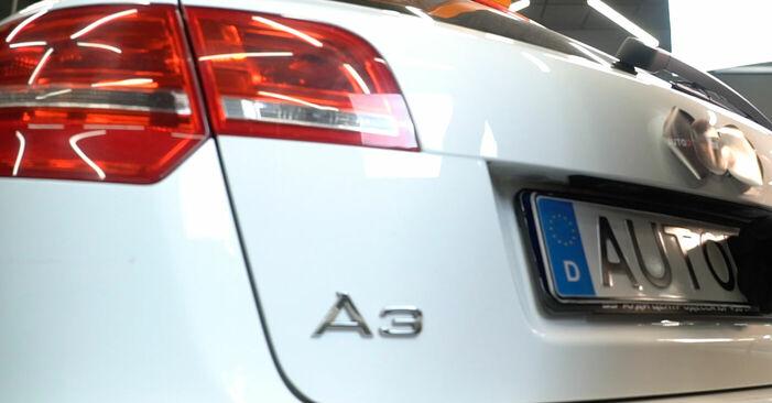 Audi A3 8p1 1.9 TDI 2005 Heckklappendämpfer wechseln: Gratis Reparaturanleitungen