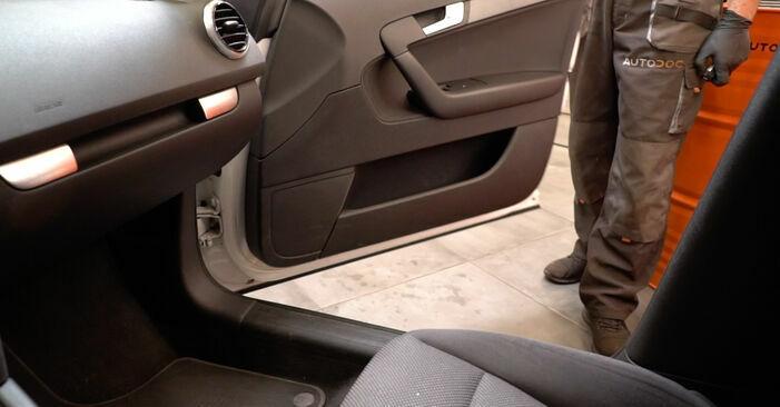 Wie Innenraumfilter Audi A3 8p1 2.0 TDI 16V 2003 tauschen - Kostenlose PDF- und Videoanleitungen