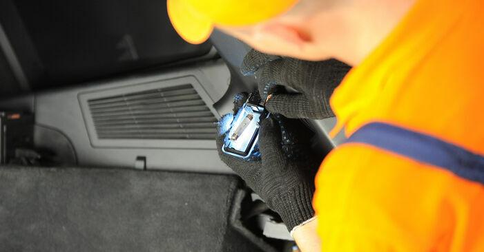 Schritt-für-Schritt-Anleitung zum selbstständigen Wechsel von BMW X3 E83 2007 3.0 sd Domlager