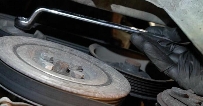 Changing Poly V-Belt on FIAT GRANDE PUNTO (199) 1.4 16V 2008 by yourself