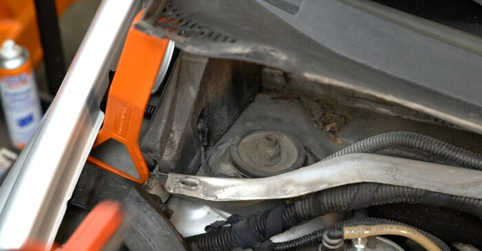 How to replace Springs on FIAT GRANDE PUNTO (199) 2013: download PDF manuals and video instructions