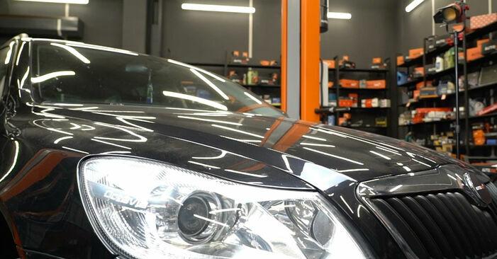 Wieviel Zeit nimmt der Austausch in Anspruch: Bremsbeläge beim Octavia 1z5 2012 - Ausführliche PDF-Anleitung