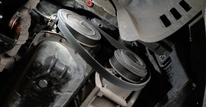 Kui keeruline on seda iseseisvalt teha: vahetada välja Ford Fiesta ja8 1.4 2014 Soonrihm - laadige alla illustreeritud juhend