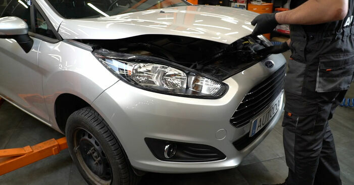 How to change Springs on Ford Fiesta ja8 2008 - free PDF and video manuals
