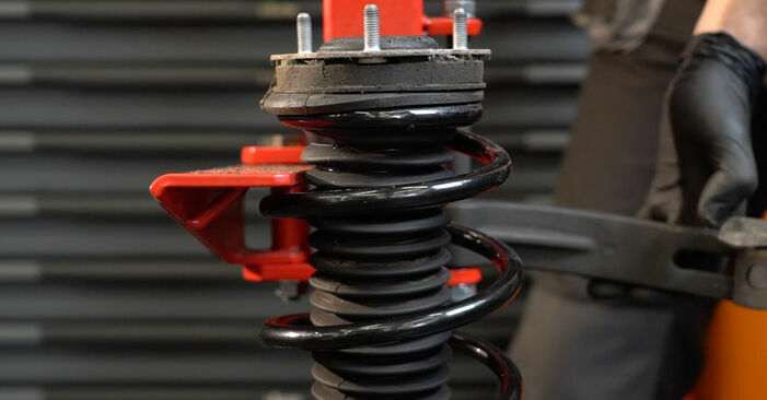 How hard is it to do yourself: Springs replacement on Ford Fiesta ja8 1.4 2014 - download illustrated guide