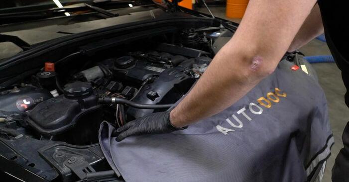 Wie man BMW 1 Coupe (E82) 120d 2.0 2002 Domlager austauscht - Schritt-für-Schritt-Tutorials und Videoanleitungen