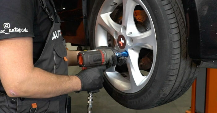 BMW 1 SERIES 2008 Domlager Schritt-für-Schritt-Tutorial zum Teilewechsel