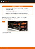 Wie ersetze ich ein vorderes Federbein beim Volvo V50 MW