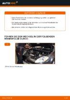 Auswechseln Federbein FIAT BRAVA: PDF kostenlos