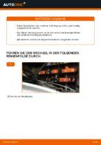 Schraubenfeder vorne links rechts wechseln: Online-Anweisung für VOLVO V50