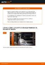 Cambio Juego de frenos de disco traseras y delanteras OPEL bricolaje - manual pdf en línea