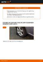 Montage Schraubenfeder OPEL ZAFIRA B (A05) - Schritt für Schritt Anleitung