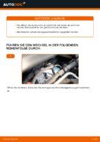 OPEL ZAFIRA B (A05) Rippenriemen: Online-Handbuch zum Selbstwechsel