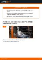 PDF Wechsel Anleitung: Radlagersatz OPEL hinten + vorne