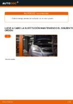 Cómo sustituir la correa acanalada en V del motor en Opel Zafira B A05