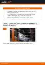Cómo cambiar el rodamiento de cubo de la rueda trasera en Opel Zafira B A05